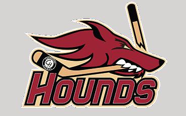 Hounds Champions Hockey